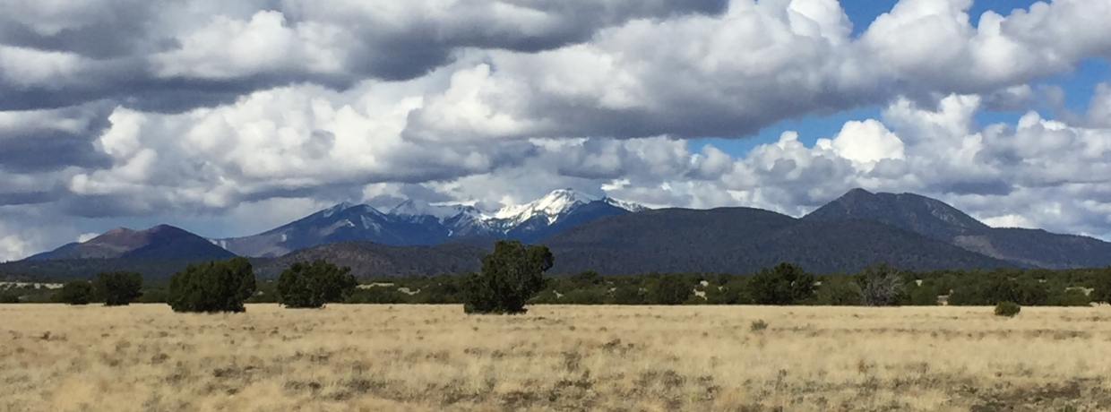 San Francisco Peaks near Flagstaff as seen from State Trust Land